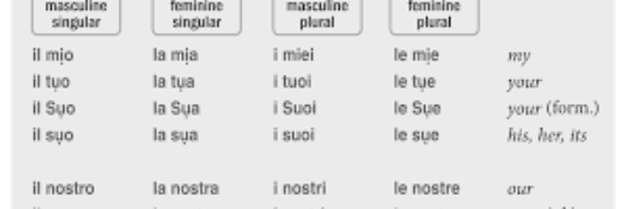 Italian Possessive pronouns